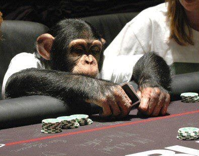Poker Thoughts – Only The Crazy Survive